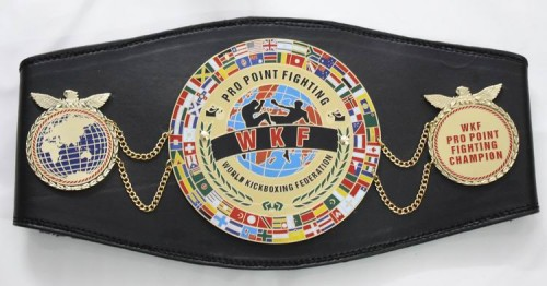 WKF-Pro-Point-Fighting-belt